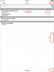 Songs view in setlist helper for iOS